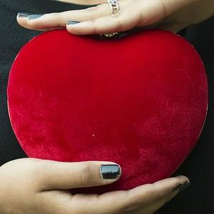 Beautiful Heart Shaped Clutch - IL13c
